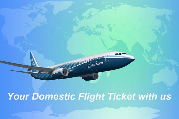Domestic flights booking service